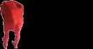 cropped-Logo070.png